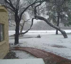 snow in Tucson