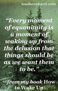 toni bernhard equanimity quote