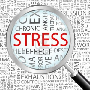stress1-e1379774715814
