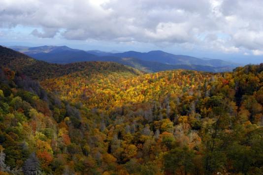 autumn-in-asheville