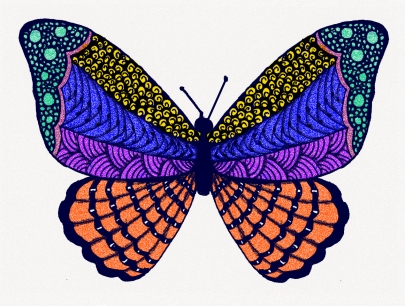 butterfly-color
