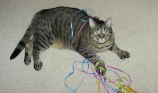 max with ribbons