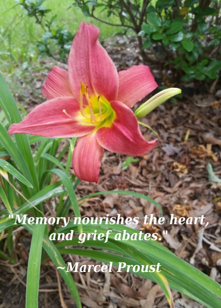 day lilly with quote